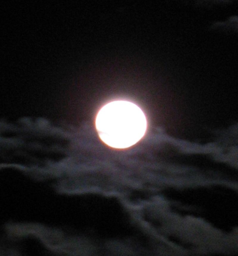 Suspicious_moon